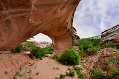 Utah - NATURAL BRIDGES NATIONAL MONUMENT - Kachina Bridge (AlCapitol) Tags: kachinabridge naturalbridgesnationalmonument nikon d800 utah bridge pontnaturel