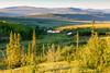 Midnight sun (BLM Alaska) Tags: alaska daltoncorridor daltonhighway highwayroads season summer midnightsun snow