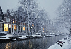 Snow falling in the Jordaan in the early evening (B℮n) Tags: holland netherlands nederland bike snow covered bikes bicycle canals winter cold street anne dutch people scooter gezellig cafés snowy snowfall atmosphere colorful walk walking cozy light corner water canal weather cool sunset celcius mokum grachtengordel unesco world heritage sled sleding slee seagull nowandthen meeuw bycicle 1°c sun sneeuw brug slippery glad flakes handheld wind amsterdam colours colors jordaan linden boom tree iep elm egelantiersgracht 50faves topf50 100faves topf100 200faves topf200 300faves topf300