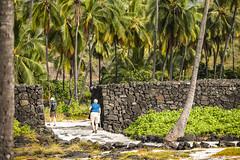 Trough The Gates (wyojones) Tags: hawaii hawaiian hōnaunau puuhonuaohōnaunaunationalhistoricalpark placeofrefuge palmtrees lavafield puuhonua people hikers cane walk trail path gateway opening