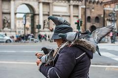 """Ce n'è per tutti"" (RM) / ""There's something for everyone"" (RM) (Stefano Innocenzi) Tags: street amore piccioni pane riconoscenza"