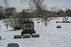 Graceland 3 (cbillups) Tags: gracelandcemetery charliebillupschicago cemetery chicago