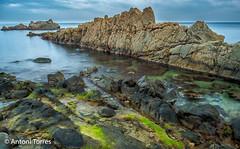 Formacions rocoses a la Costa Brava (vfr800roja) Tags: roques paisatge costabrava castell palamós catalunya españa es
