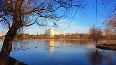 Winter in Bucharest.... (Sergiu St. O.) Tags: alexandruioncuzaparkandlake romania