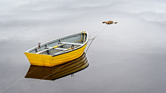 Calm waters in the bay - drizzle and reflections (Brett of Binnshire) Tags: rain shoreline weather powerboat ocean clouds water locationrecorded scenic bay harbor boat cove quebec canada stpaulsriver
