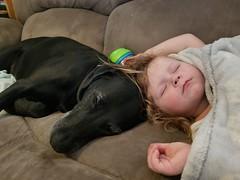 20180131_111133 (bakctdrvr) Tags: girl dog pals sleep 13118