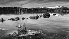 Loch Venachar (roseysnapper) Tags: benvenue lochvenachar nikkor2470f28 nikond810 blackandwhite circularpolarizer loch scotland trossachs cold grass ice lake landscape monochrome mountain outdoor snow water winter rock sky
