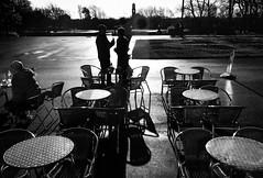 Ionawr yn y parc / January in the park (Rhisiart Hincks) Tags: cysgodion itzalak skeudoù shadows ombres dubharan scáthanna silhouette silwét cysgodlun ledskeud sgàilriochd sgàildhealbh scáthchruth zilueta cafaidh caffi caffe café caifecafe kafetegi kafe kafedi stanleypark tables byrddau taolioù sirgaerhirfryn lancashire lloegr england sasana brosaoz ingalaterra angleterre inghilterra anglaterra 英国 angletèrra sasainn انجلتــرا anglie ngilandi ue eu ewrop europe eòrpa europa blackpool fylde cyrchfangwyliau holidayresort powsows gaeaf negu goañv gouañv hiver winter geamhradh blancinegre duagwyn gwennhadu dubhagusgeal dubhagusbán blackandwhite bw zuribeltz blancetnoir blackwhite