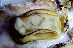 DSC00040 (muzina_shanghai) Tags: 牡蠣 蒸し牡蠣 oyster