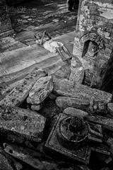 Pray for Long Life! (Udhabkc) Tags: ifttt udhabkc udhab 500px nikon nikond810 nikonasia photowalkersnp udhabkcphotography iamnikon iamudhabkc kathmandu nepal bhaktapur culture religion faith devotee pray madhav narayan god hindu newar monochrome black white shiva swasthani goddess old man