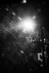 St. John's Harbour at Night in the Rain 2 (LongInt57) Tags: rain raining windy night dark light harbour stjohns newfoundland canada bw monochrome black white grey gray weather