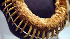 Bear Claw Necklace (Pawnee)
