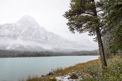 Chephren in Snow (Kirk Lougheed) Tags: alberta banff banffnationalpark canada canadian icefieldsparkway autumn fall landscape nationalpark outdoor park