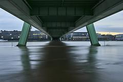 Strong current (hbothmann) Tags: köln nrw deutschland rhein rhin rhen rhine cologne colonia colônia severinsbrücke hochwasser variosonnar163528za