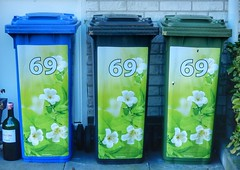 69-69-69 (sander_sloots) Tags: klikos wheelie bins containers vuilnisbak rotterdam litter big bottle magnum grote fles flowers bloemen