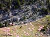 Casemates (Audrey Abbès Photography ॐ) Tags: casemates bunker montagne alpes hautesalpes alps alpesdehauteprovence audreyabbès france fleurs nature blockhaus fortification alpesdusud paysage