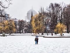 Frozen Public Garden Pond ((Jessica)) Tags: newengland massachusetts boston publicgarden pond frozen winter