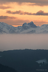 Rising fog (StevenReburgh) Tags: winter alps alpen allgäu tannheimer berge aggenstein bayern bavaria germay landscape mountain peaks fog wood sunset clouds cloudporn sundown snow forest
