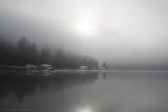 oyster bay fog (tesseract33) Tags: tesseract33 nikon light world art travel sea ocean sky outdoors pacificnorthwest penderharbour nikond750 nikondigitalart