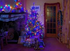 IMGP8867 (mattbuck4950) Tags: england unitedkingdom europe december somerset northsomerset wraxall christmastrees christmaslights christmas charmwoodlounge night 2017 christmas2017 gbr