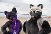 DSC02095 (Kory / Leo Nardo) Tags: fur furry fursuit fursuiting costume cosplay animal fursona space camp party alameda faction brewing 12118 pupleo thebayareafurries