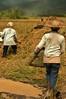 IMG_0463 (Kalina1966) Tags: bali island indonesia people rice field