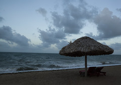 IMG_3696 (CandiceLobo) Tags: belize belizeandreams beach besttimes honeymoon travel tropical adventure happyplace beautiful ocean blue green nature getaway