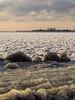 Frozen IJselmeer (Dutchie Photography) Tags: netherlands ijselmeer frozen bevroren ice nature waterfront gras