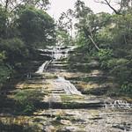 The Katoomba Fall in Green thumbnail