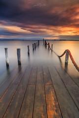 Old Pier, Ria de Aveiro (paulosilva3) Tags: sunrise ria de aveiro old pier colors longexpos canon eos6d manfrotto progrey filtersusa