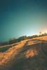 The Road Less Travelled (Klinkin) Tags: canon 600d landscape nightphotography longexposure dirtroad roads rebelt3i macro