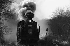 吐著濃濃黑煙的龐然巨獸 - 冬の湿原号 2018 The SL Fuyuno Shitsugen (*dans) Tags: 蒸気機関車 釧網本線 sl冬の湿原号 sl冬之濕原號 湿原号 濕原號 sl slsteamlocomotivetrain slfuyunoshitsugentrain slfuyunoshitsugen steamlocomotive train kushiro hokkaido japan jr北海道 茅沼 茅沼駅 かやぬまえき
