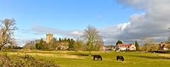 FRAMPTON ON SEVERN (chris .p) Tags: nikon d610 frampton gloucestershire england winter 2018 uk church framptononsevern february