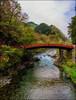 Shinkyo (The Sacred Bridge) (Martin Smith - Having the Time of my Life) Tags: shinkyo bridge nikko japan2016 japan daiyariver river springfoliage martinsmith ©martinsmith nikond750 nikkor2485mmf3545gedvr landscape nikkōshi tochigiken jp