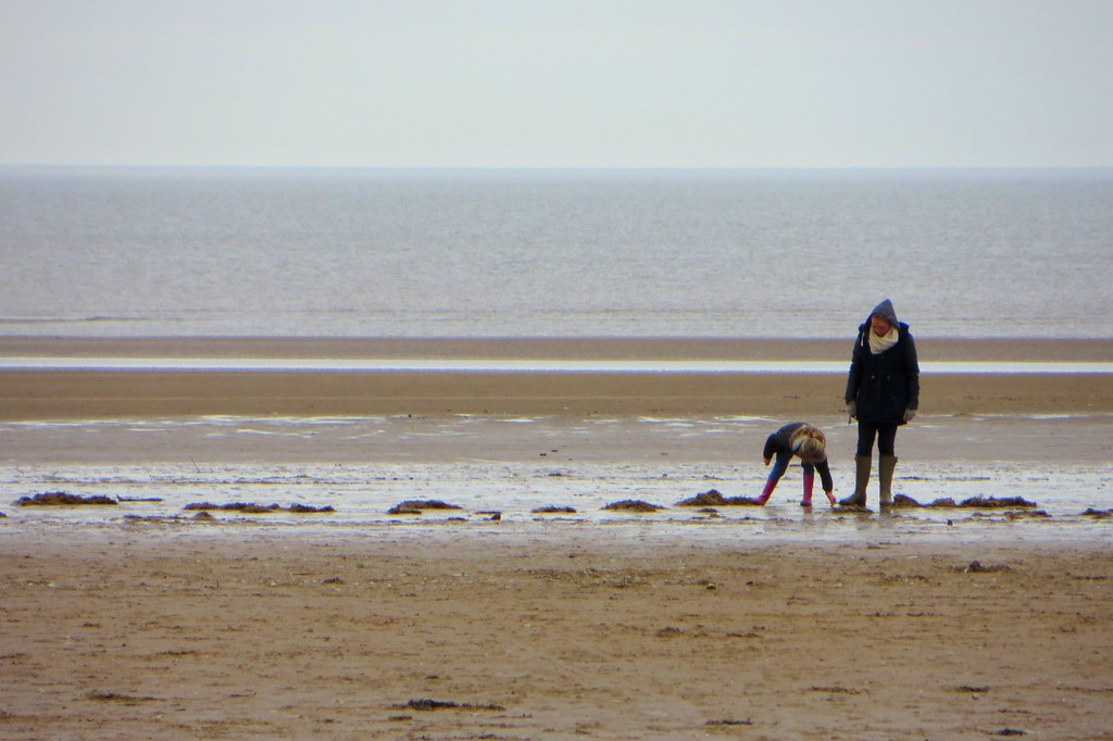 Project 365 #49: 180218 The Beachcombers