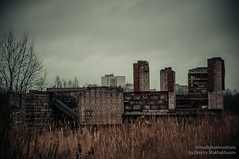 MDD_8688 (Dmitry Mahahurov) Tags: nikon d300 mahahurov tosno