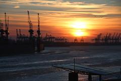 Eiszeit in Hamburg (Elbmaedchen) Tags: eiszeit hafen hamburgerhafen hafensilhouette elbe sonnenuntergang sundown landungsbrücken blockbräu blohmvoss dock11 wasgibtesschöneres