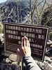 IMG_1904 (billlushana1) Tags: yushannationalpark yushannationalpark玉山國家公園 hualien national nationalpark forest batongguanmountain batongguanhistorictrail 八通關古道 八通關東段 iphone7 iphoneography iphone