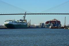 Savannah River traffic (Jimmie Fisher) Tags: savannahgeorgia savannahriver talmadgememorialbridge molbelief rollonrolloffshipsalome cargoshipsalome containershipmolbelief