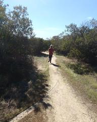 014 A Winding And Narrow Trail (saschmitz_earthlink_net) Tags: 2018 california orienteering irwindale losangelescounty santafedam santafedamrecreationarea laoc losangelesorienteeringclub tree trail participant