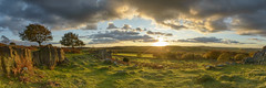 Beacon Hill Sunset (John__Hull) Tags: panorama beacon hill charnwood leicestershire trees rocks crags england uk ferns bracken sunset view winter nikon d3200 sigma 1020mm clouds woods light shadow breath taking landscapes