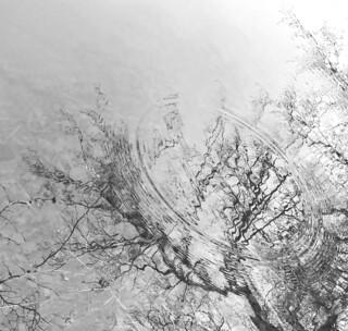 circles and reflections