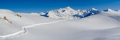 Panorama, la trace vers le Weisshorn (Switzerland) (christian.rey) Tags: traces neige snow track panorama valdanniviers val anniviers grimentz weisshorn zinalrothorn orzival valais wallis swiss alpes alps mountains montagnes bergen hiver winter tg4 olympus tough paysage landscape
