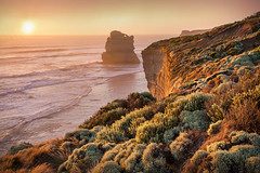 Gibsons Steps At Sunset || GREAT OCEAN ROAD || AUSTRALIA (rhyspope) Tags: australia aussie vic victoria great ocean road sunrise sunset gibsons steps 12 apostles rhys pope rhyspope canon 5d mkii cliff coast beach sea water waves coastal plants nature view vista trip travel touirst tourism explore amazing wow