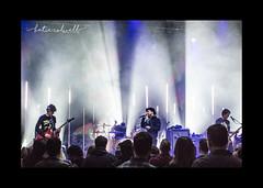 "OLP- ""I'm the lock, you're the key You're the air, the air, I breathe But tonight I'm choking"" (KT.Colwell) Tags: olp ourladypeace livemusic canadian rockband nikon dslr danforth toronto 416 blackandwhite portrait liveshow gigs silhouette canadianmusic rainemaida jasonpierce duncancoutts stevemazur groupshot bandphotography"