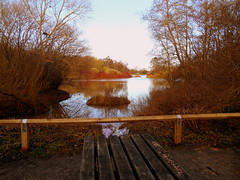 Rufford Park (kelvin mann) Tags: ruffordcountrypark rufford ruffordpark park nottinghamshire notts outdoors