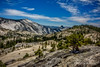 Above Olmsted Point (Tony Phillips Photography) Tags: california halfdome olmstedpoint yosemitenationalpark granite landscape mountains outdoors scenery scenicview travel