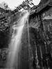 waterfall (Andrew Shepherd) Tags: launceston lightroom day iphone monochrome outdoor water waterfall tasmania australia au
