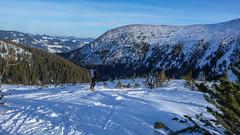 Zjazd z Połoniny Gadżyna Wyżna 1567m- dzień 1. (Tomasz Bobrowski) Tags: bystrzec białysłoń gadżynawyżna narty skitouring skitury góry czarnohora ski mountains skitura