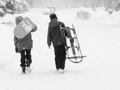 Let's go find a hill! (Thiophene_Guy) Tags: thiopheneguy originalworks xz1 olympusxz1 sled snow camerawrappedinbreadbagtapedclosedarounduvfilter blur slowshutterblur winter snowfall